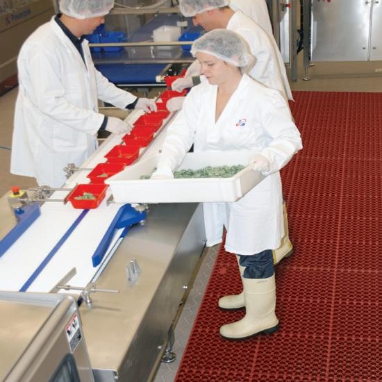Food-Verarbeitung & Gastro-Küchen